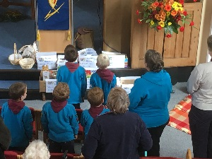 Hayling Island Beavers at harvest