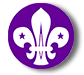 F-scout-logo.png