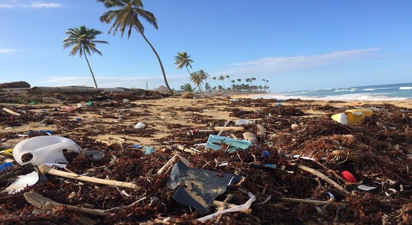 plastic ocean dustan woodhouse 675082 unsplash
