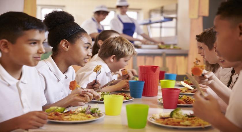 school dinners credit shutterstock news banner